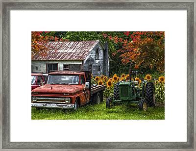 Best Friends Framed Print by Debra and Dave Vanderlaan