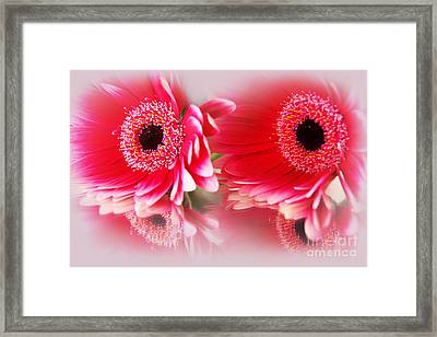 Best Friends Framed Print by Eden Baed