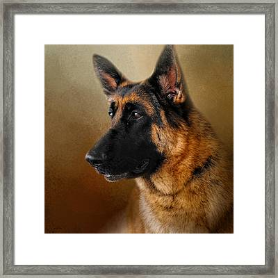 Best In Show - German Shepherd Framed Print