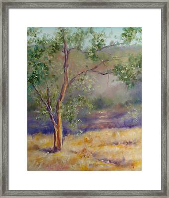 Best Of Both Worlds Framed Print by Shannon Grissom