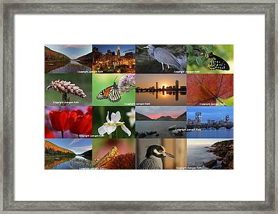 Best Photography Of The Year 2012 Framed Print by Juergen Roth
