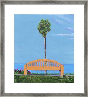 Best Seat In San Clemente Framed Print