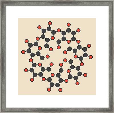 Beta-cyclodextrin Molecule Framed Print