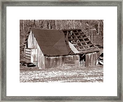 Framed Print featuring the photograph Better Days by Craig T Burgwardt