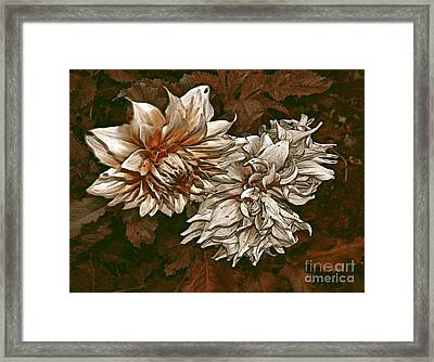 Framed Print featuring the photograph Betty's Beauty 1 by Don Wright