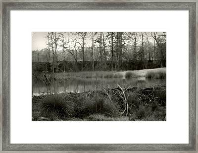 Between Now And Then Framed Print by Nina Fosdick