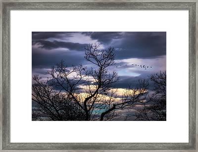 Between Seasons Framed Print by Bob Orsillo