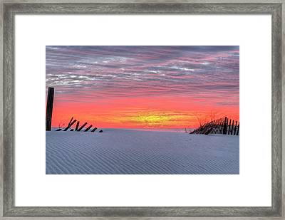Between The Fence Framed Print