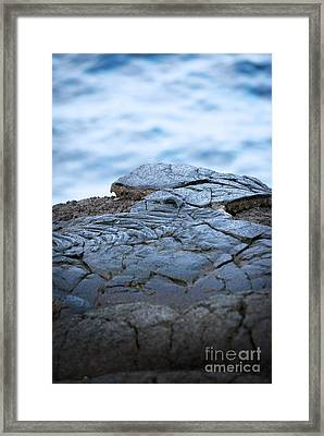 Framed Print featuring the photograph Between You And Me by Ellen Cotton