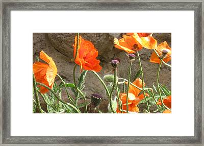 Beulah Orange Framed Print
