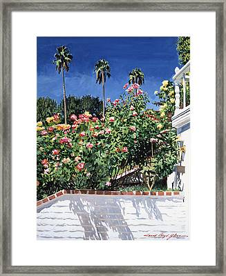 Beverly Hills Roses Framed Print by David Lloyd Glover