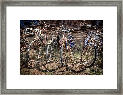 Bevy Of Bicycles Framed Print