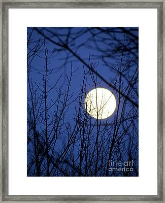 Beware The Ides Of March Framed Print