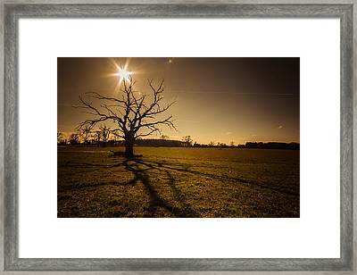 Beware The Tendrils Of The Shadow Beast Framed Print by Chris Fletcher