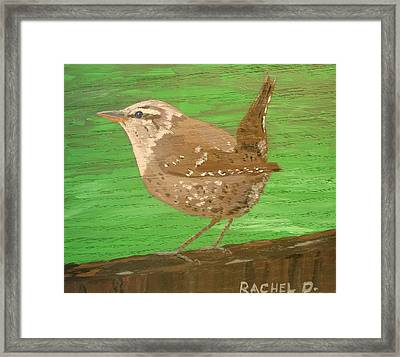 Bewicks Wren Ready To Take Flight Framed Print by Rachel Dickson