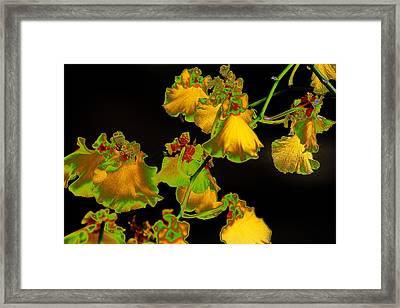 Framed Print featuring the photograph Beyond Beyond by Ira Shander