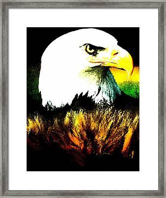 Beyond Eagle View Framed Print