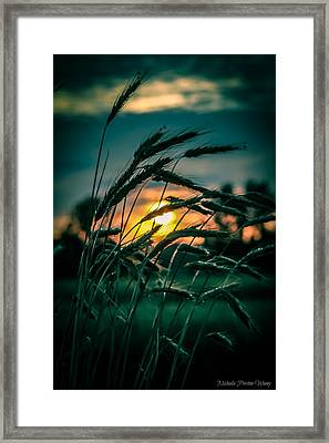 Framed Print featuring the photograph Beyond Expectations 2 by Michaela Preston