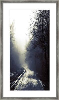 Beyond Framed Print by Lisa Knechtel