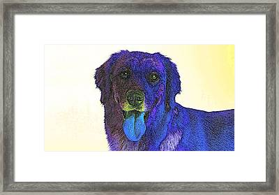 Beyond Purple Framed Print by Kathy Budd