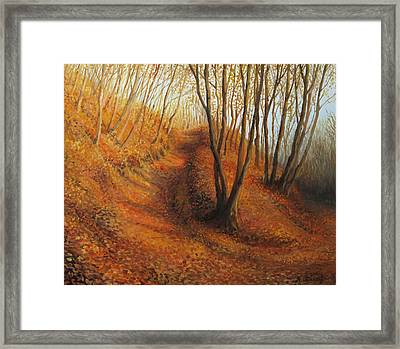 Beyond Silence Framed Print by Kiril Stanchev