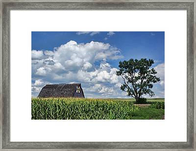 Beyond The Corn Framed Print