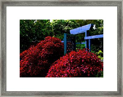 Beyond The Garden Gate Framed Print by James Temple