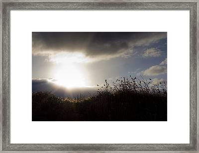 Beyond The Morning Framed Print