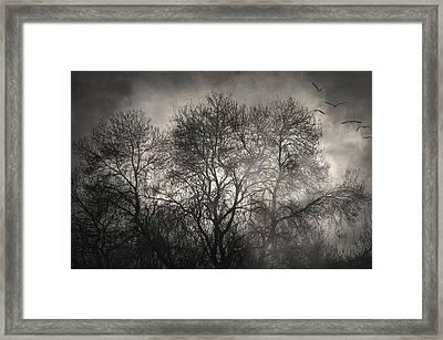 Beyond The Morning Framed Print by Taylan Apukovska