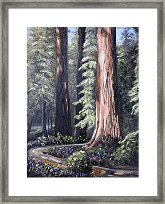 Beyond The Path Framed Print
