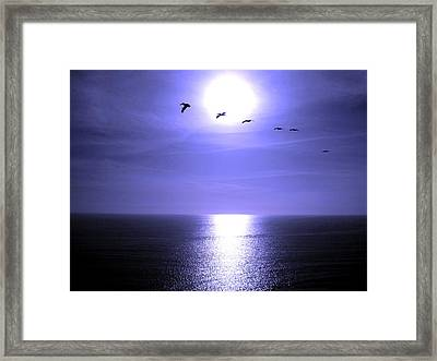 Beyond The Sea Framed Print by Catherine Natalia  Roche