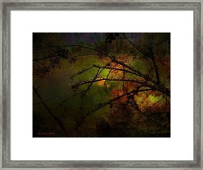 Beyond The Thorns Framed Print by J Larry Walker