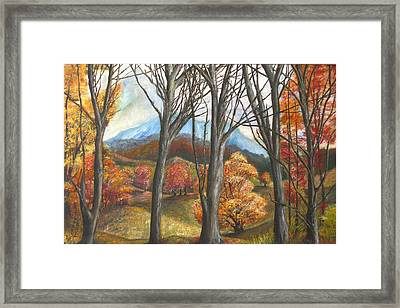Beyond The Trees Framed Print