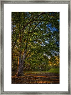 Beyond The Yard Framed Print by Marvin Spates