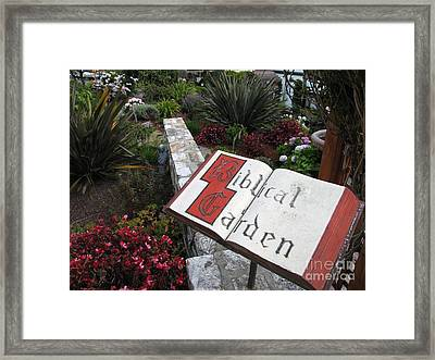 Framed Print featuring the photograph Biblical Garden by James B Toy
