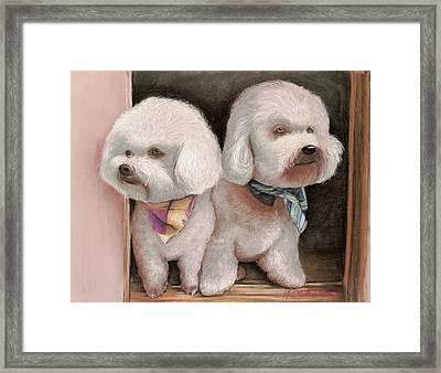 Framed Print featuring the painting Bichon Frise by Melinda Saminski