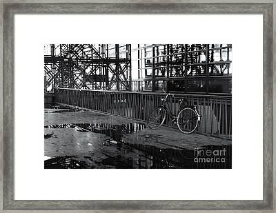 Framed Print featuring the photograph Bicycle Alone by Maja Sokolowska