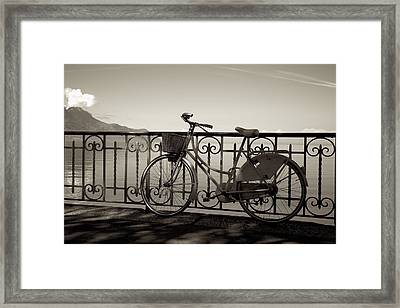 Bicycle Basket Fence Framed Print