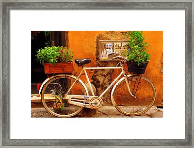 Bicycle In Rome Framed Print by Caroline Stella