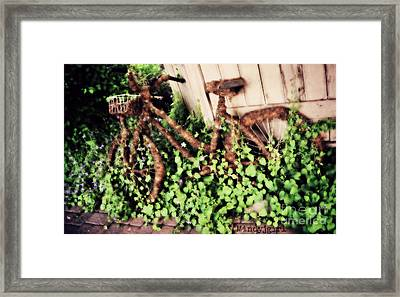 Framed Print featuring the photograph Bicycle  by Mindy Bench