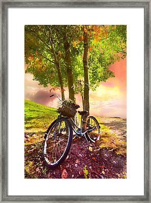 Bicycle Under The Tree Framed Print by Debra and Dave Vanderlaan
