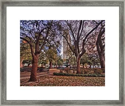 Bienville Spring Framed Print by Michael Thomas