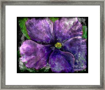 Big African Violet - Purple Flower - Steel Engraving Framed Print