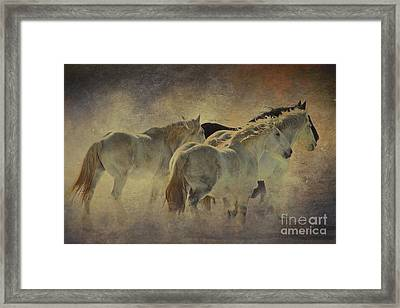 Big And Beautiful Series Number 3 Framed Print