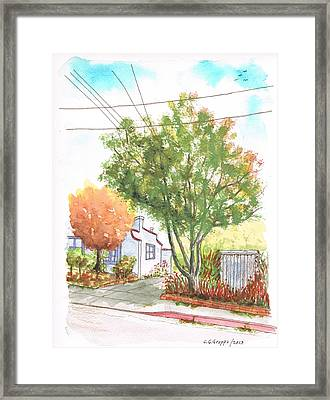 Big And Small Trees In West Hollywood - California Framed Print