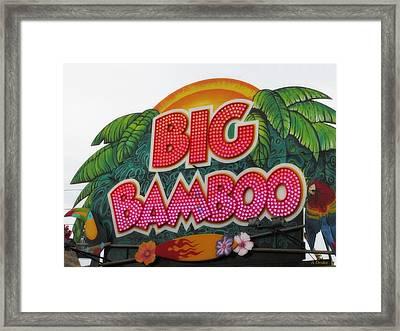 Big Bamboo Framed Print by Alec Drake