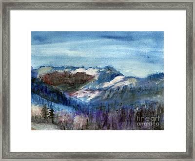 Big Bear Framed Print by Sandra Stone