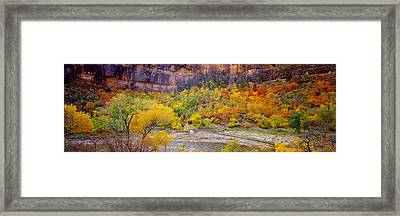 Big Bend In Fall, Zion National Park Framed Print
