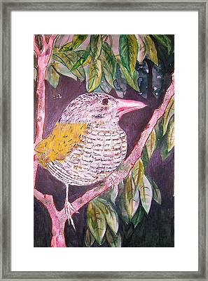 Big Bird Framed Print by Linda Vaughon