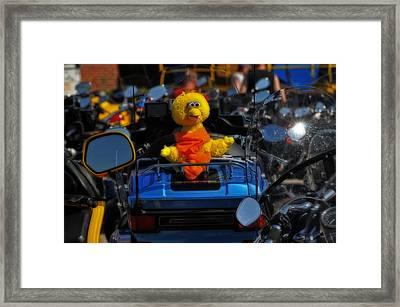 Big Bird Framed Print by Mike Martin
